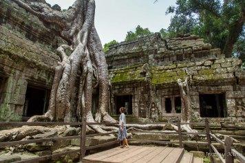 cambodia_angkor_wat-6350