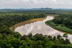 BorneoSandakanTour-1089